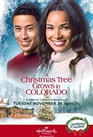 Watch Movie A Christmas Tree Grows in Colorado