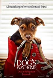 Watch Movie A Dog's Way Home