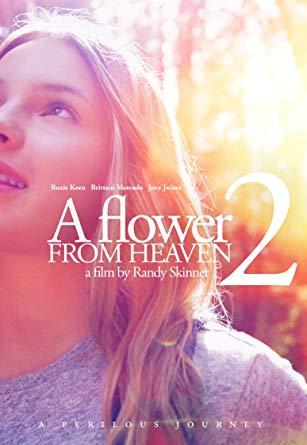 Watch Movie A Flower From Heaven 2