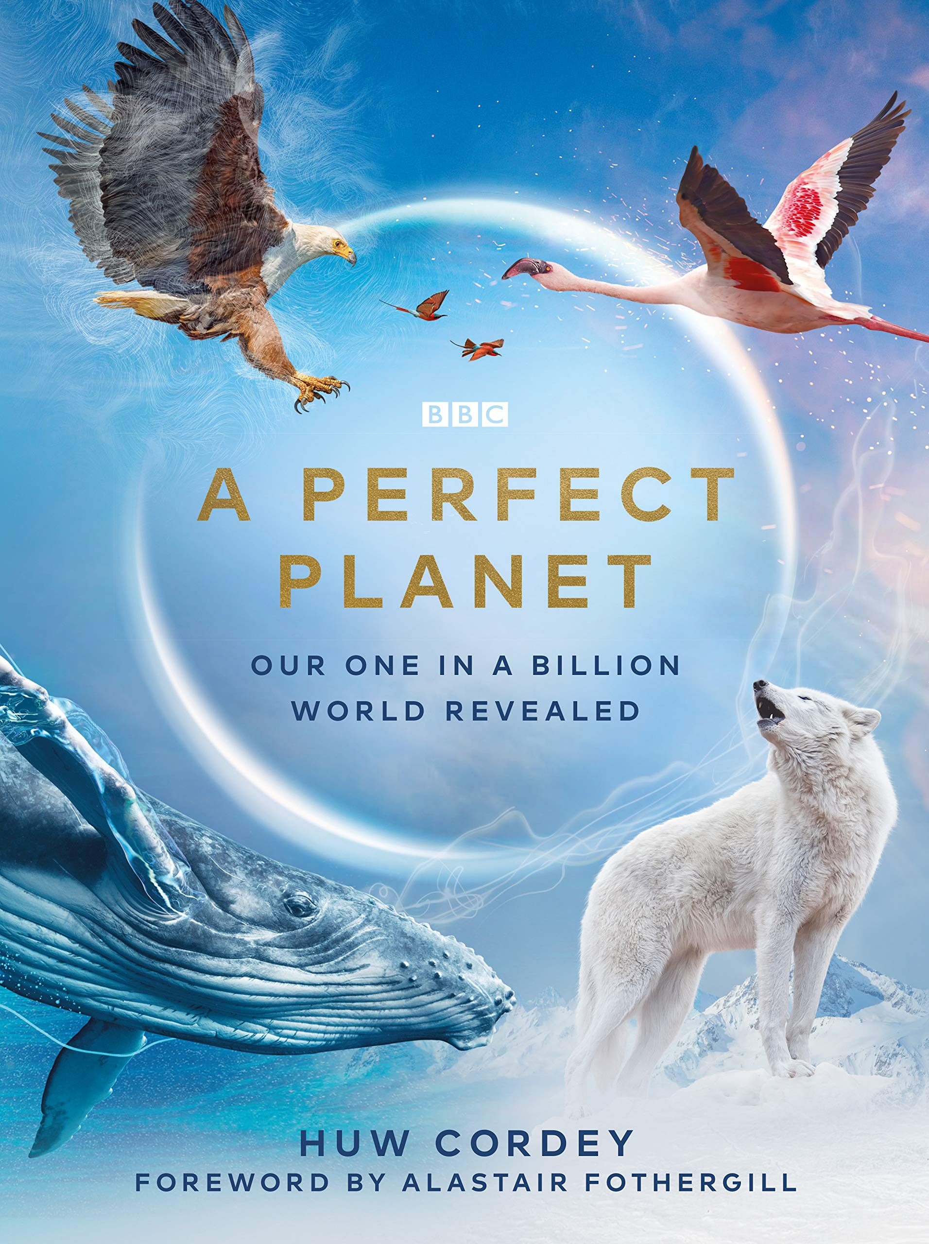 Watch Movie A Perfect Planet - Season 1