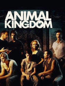 Watch Movie Animal Kingdom - Season 1