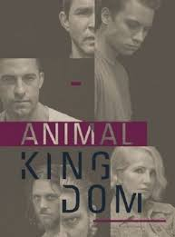 Watch Movie Animal Kingdom - Season 2