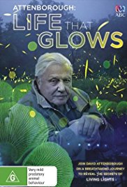 Watch Movie Attenborough's Life That Glows
