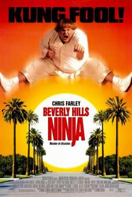 Watch Movie Beverly Hills Ninja
