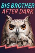 Watch Movie Big Brother: After Dark - Season 21