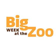Watch Movie Big Week at the Zoo - Season 1