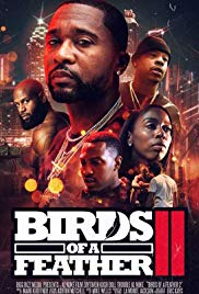 Watch Movie Birds of a Feather 2