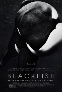 Watch Movie Blackfish