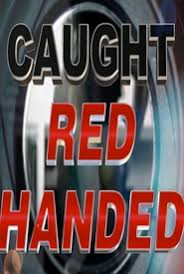 Watch Movie Caught Red Handed - Season 8