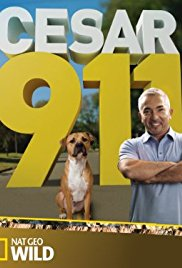 Watch Movie Cesar 911 season 5