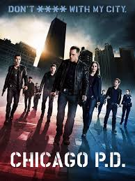 Watch Movie Chicago Pd - Season 1