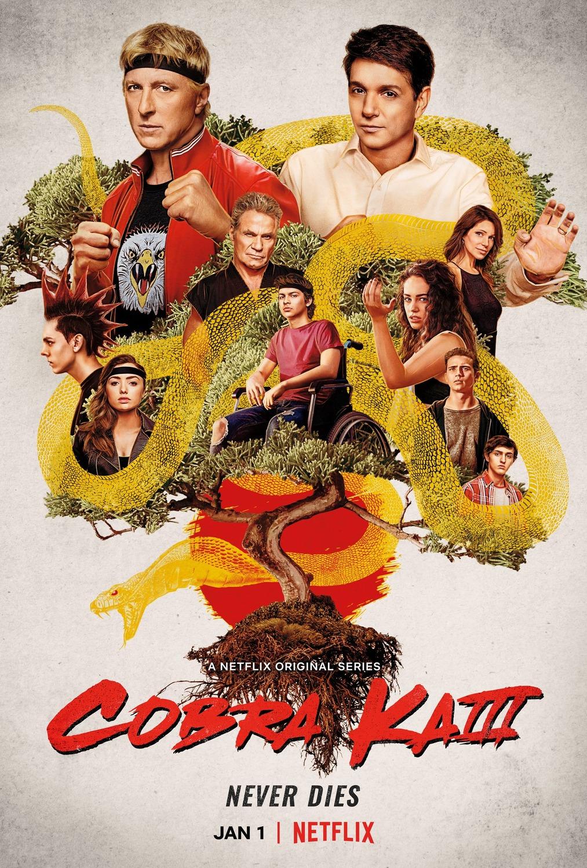 Watch Movie Cobra Kai - Season 3