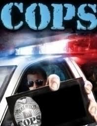 Watch Movie Cops - Season 25