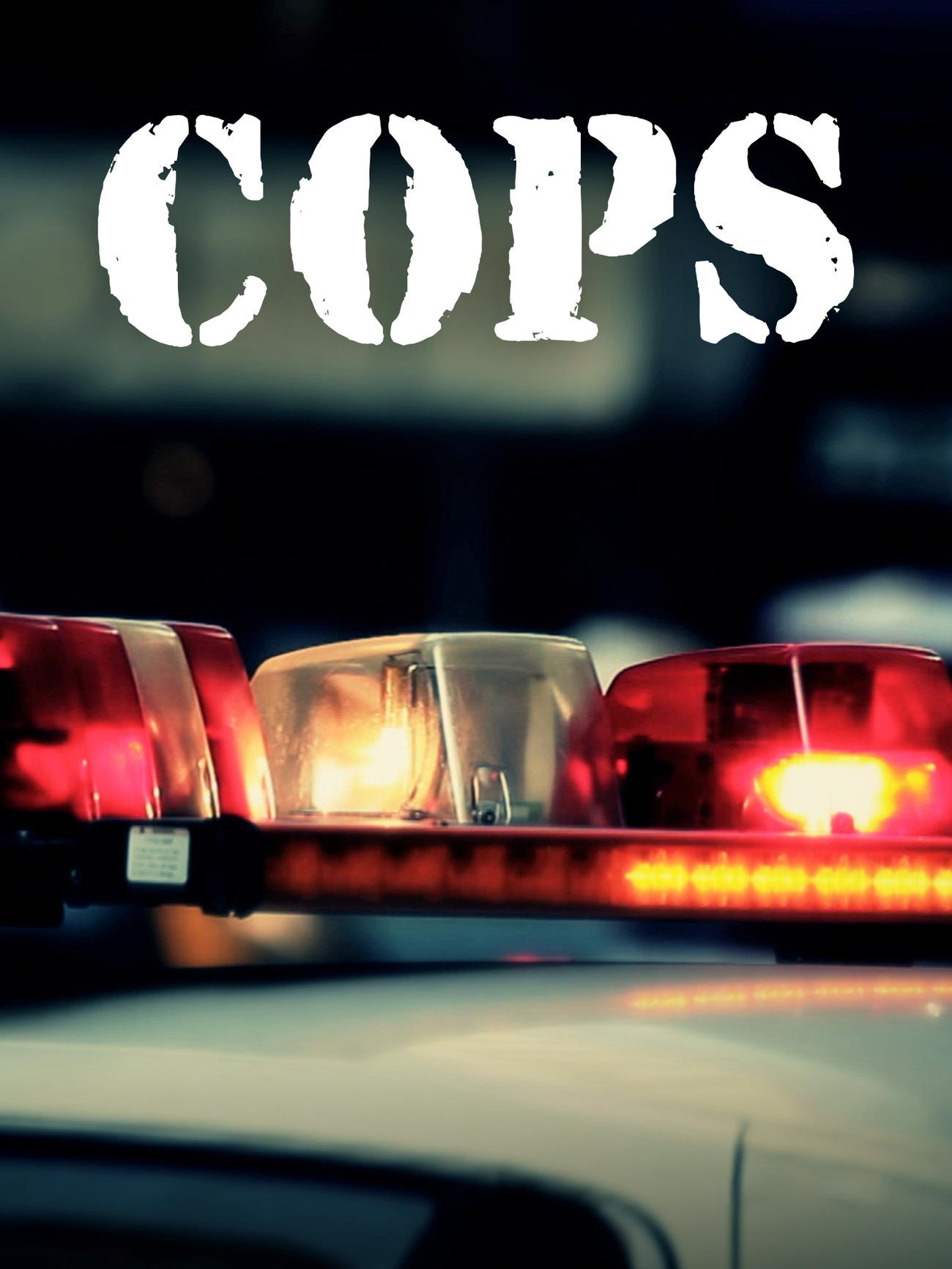 Watch Movie  Cops - Season 31