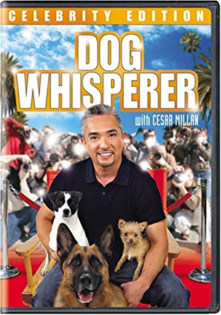 Watch Movie Dog Whisperer with Cesar Millan - Season 5
