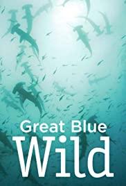Watch Movie Great Blue Wild - Season 3