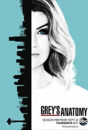 Watch Movie Grey's Anatomy - Season 13