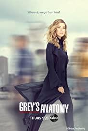 Watch Movie Grey's Anatomy - Season 17