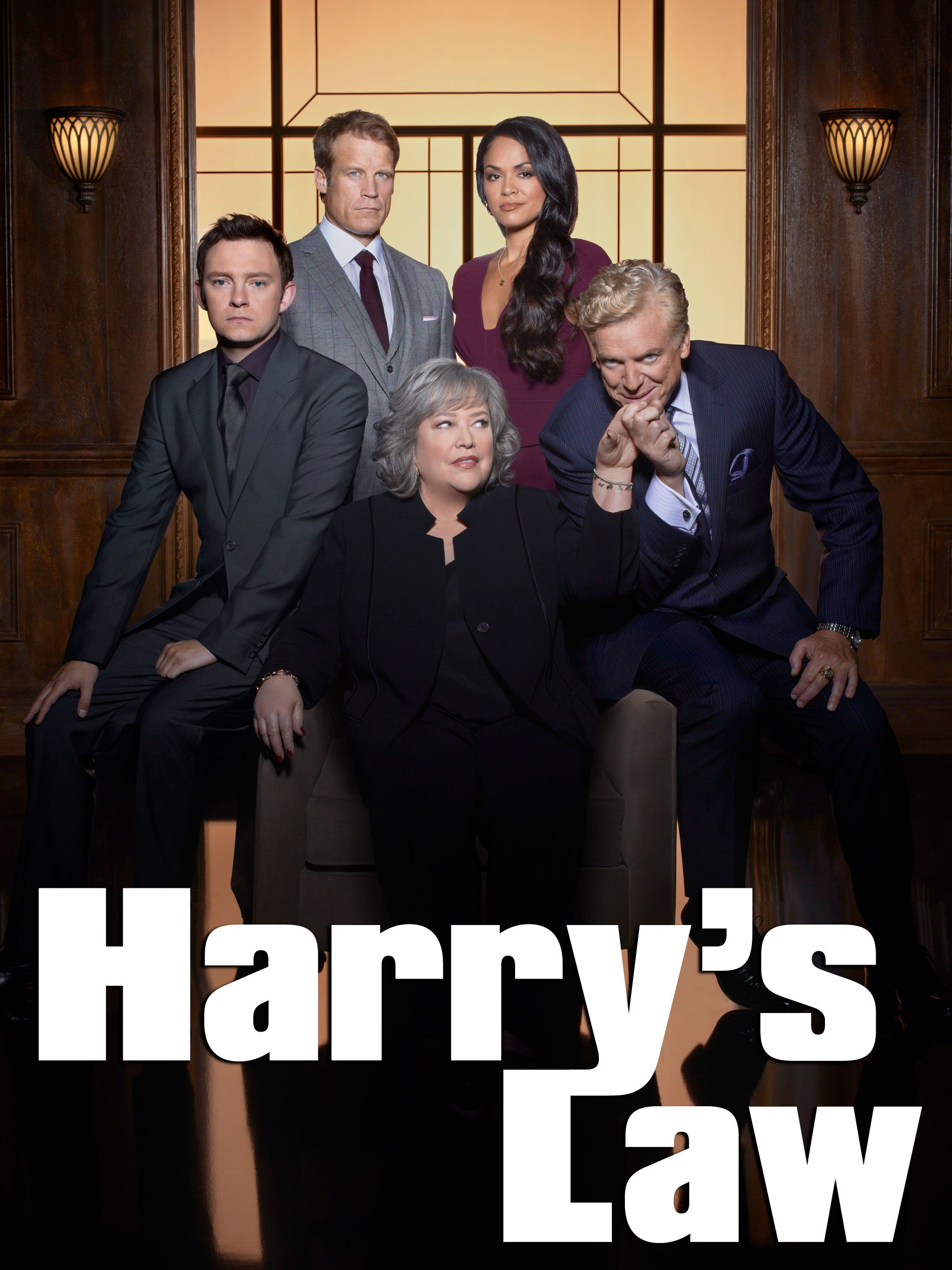 Watch Movie Harry's Law - Season 1