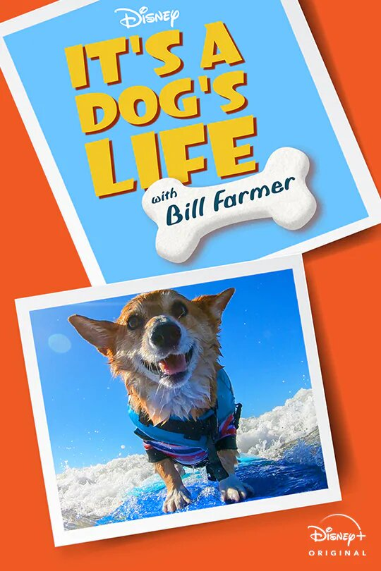 Watch Movie It's a Dog's Life - Season 1