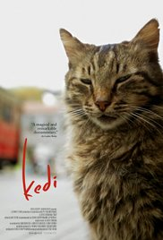 Watch Movie Kedi