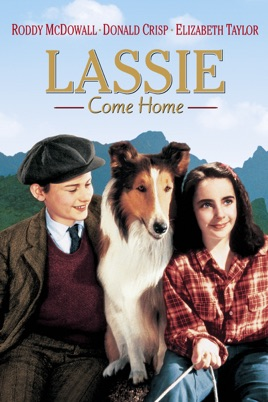 Watch Movie Lassie Come Home (1943)
