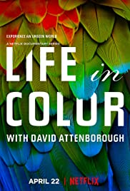 Watch Movie Life in Colour - Season 1