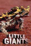 Watch Movie Little Giants (2019) - Season 1