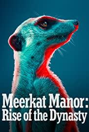 Watch Movie Meerkat Manor: Rise of the Dynasty - Season 1