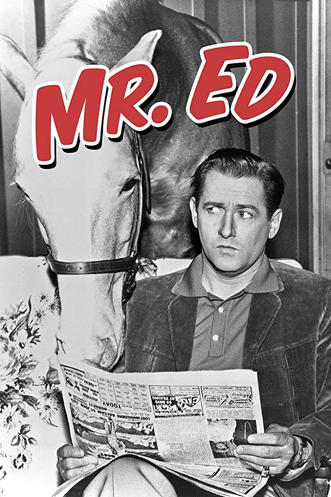 Watch Movie Mister Ed - Season 1