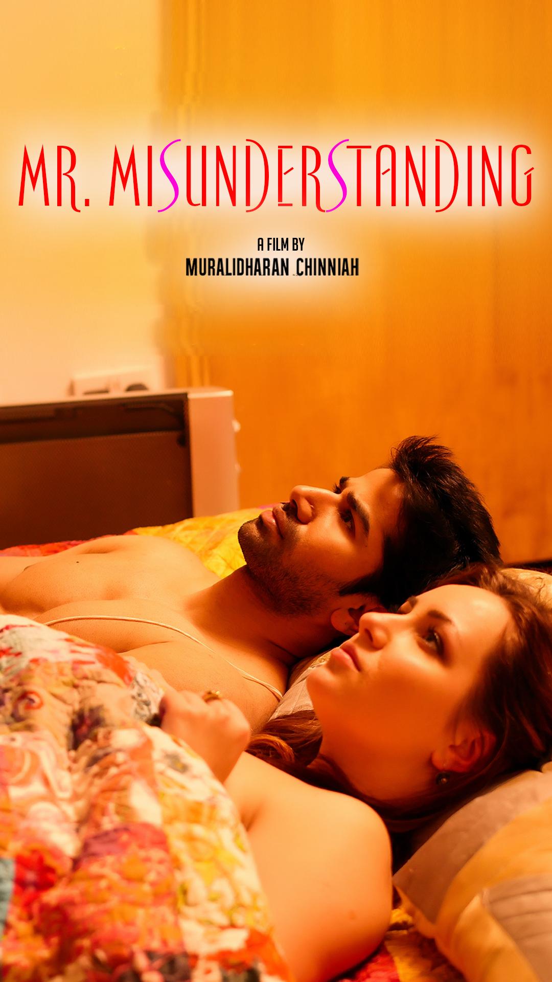 Watch Movie Mr. Misunderstanding