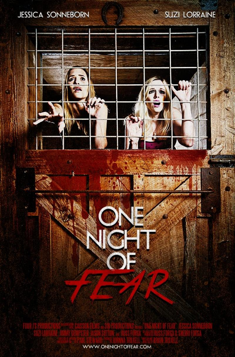 Watch Movie One Night Of Fear