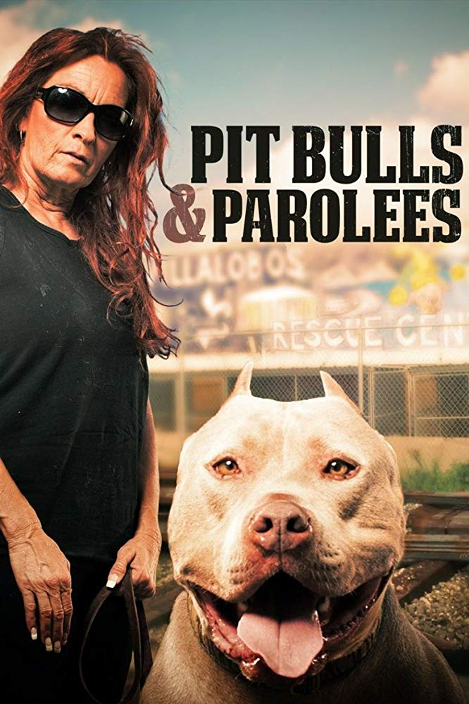 Watch Movie Pit Bulls and Parolees - Season 1