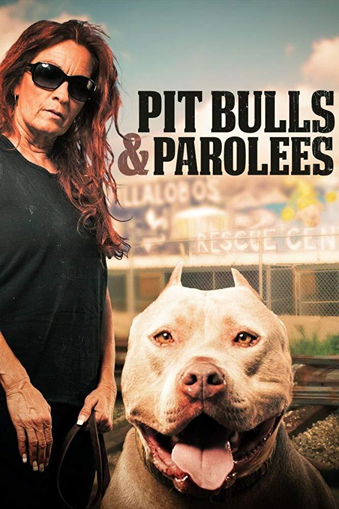 Watch Movie Pit Bulls and Parolees - Season 2