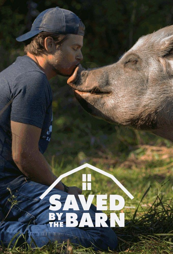 Watch Movie Saved By The Barn - Season 1