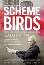 Watch Movie Scheme Birds