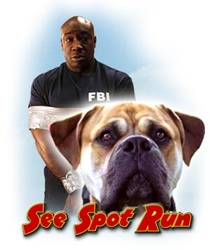 Watch Movie See Spot Run