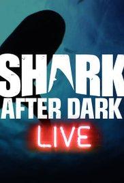 Watch Movie Shark After Dark - Season 5