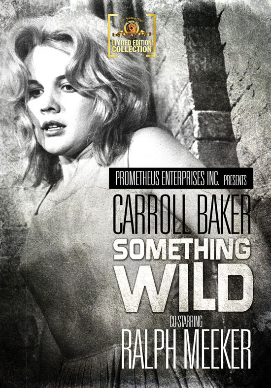Watch Movie Something Wild