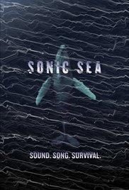 Watch Movie Sonic Sea