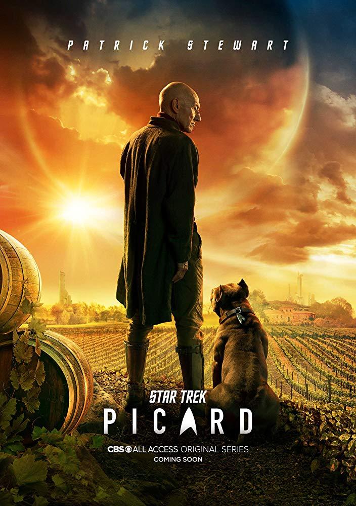 Watch Movie Star Trek: Picard - Season 1