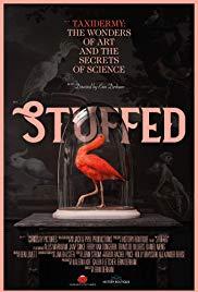 Watch Movie Stuffed