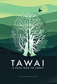 Watch Movie Tawai: A voice from the forest