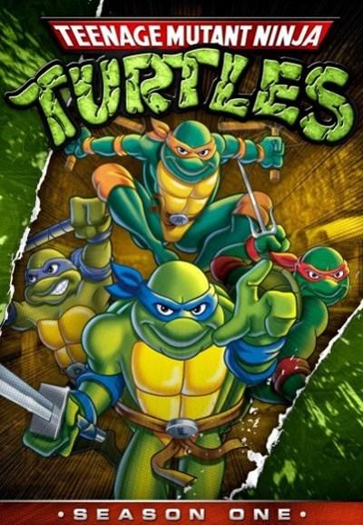 Watch Movie Teenage Mutant Ninja Turtles - Season 6