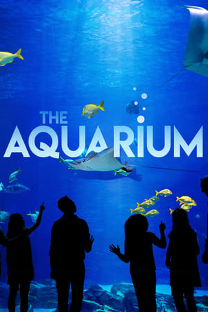 Watch Movie The Aquarium - Season 2