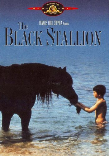 Watch Movie The Black Stallion