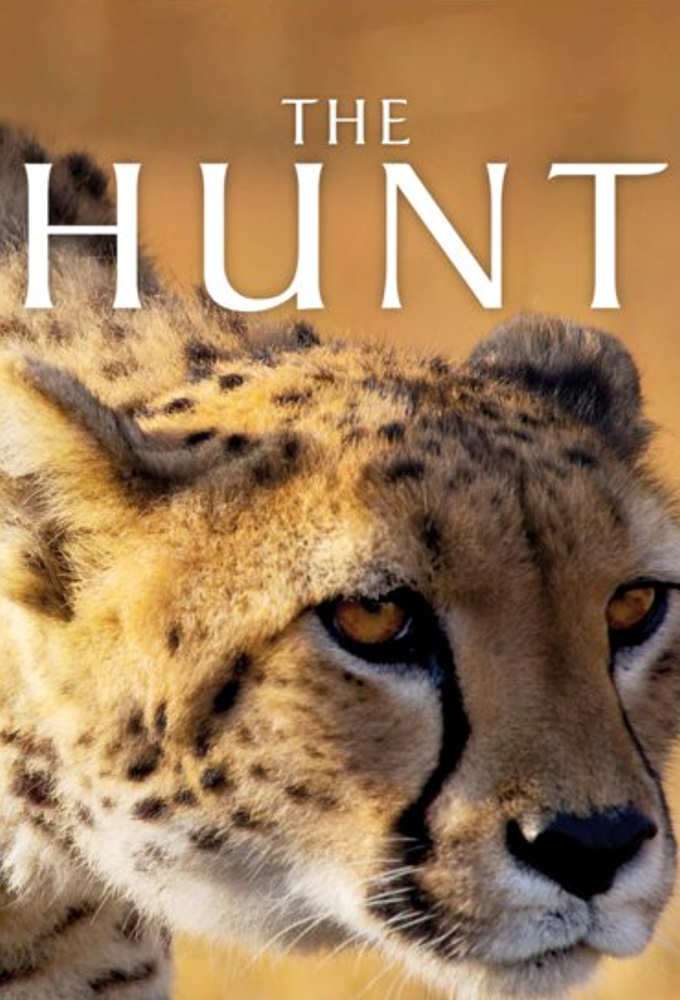 Watch Movie The Hunt - Season 1