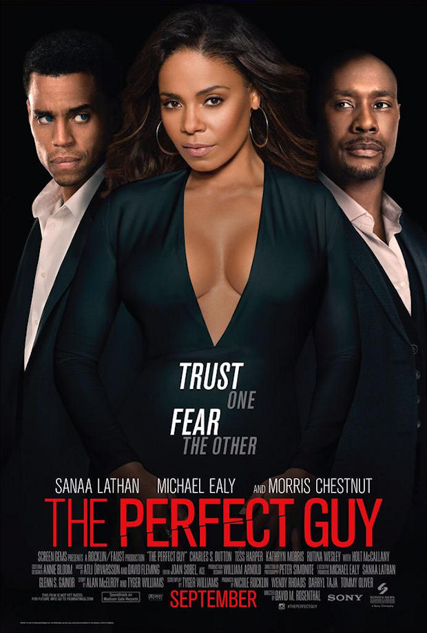 Watch Movie The Perfect Guy