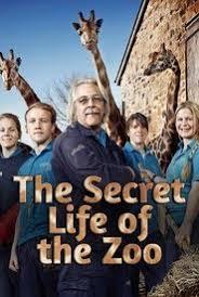 Watch Movie The Secret Life Of The Zoo - Season 5