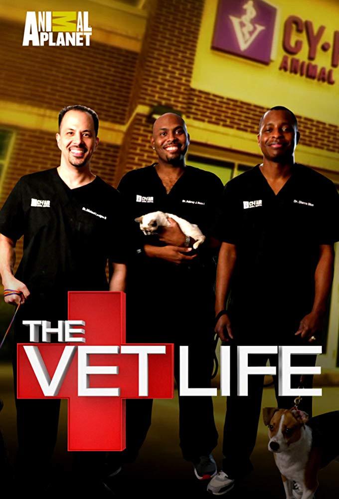 Watch Movie The Vet Life - Season 3
